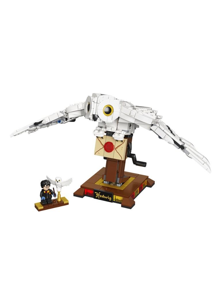 Hedwig 75979